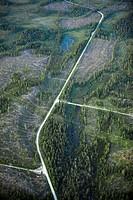 Highway in forest area, gravel ways, cut forest area, aerial view. Lappland. Sweden