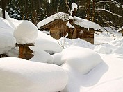 Log cabin on snow covered landscape, Austria