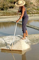 Collecting salt in the salterns. Marsh of Le Fier d´Ars. Ré Island. Charente Maritime. France.