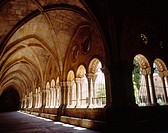 Cloister. Cathedral of Santa Maria. Tarragona. Catalonia. Spain
