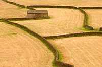 Pattern in the landscape near Gunnerside in Swaledale Yorkshire England UK