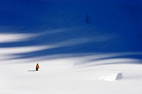 Teddy Berr, pro-skiers, personality-rights heeds!, Ski-track, skiers, low-snow, departure, series, people, season, winters, wintry, winter-sport-area,...