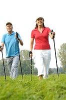 Meadow, senior-pair, Nordic Walking, movement, cheerfully, series, people, 50-60 years, 60-70 years, pair, seniors, goes, Walking, well Age, athletes ...
