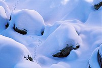 High angle view of snow covered rocks, Newberry National Volcanic Monument, Oregon, USA