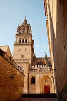 New cathedral tower, Salamanca. Castilla-León, Spain