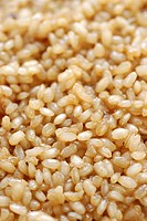 Cooked natural short-grain rice