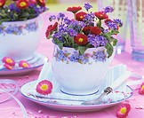Forget-me-nots and daisies in cup