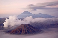 Bromo (2392m) and Semeru (3676m) volcanoes, early morning. Java island. Indonesia.