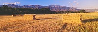 Hay Bails and Topa Topa Mountains