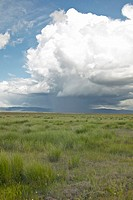 Storm clouds over grasslands and mountains at Red Rock Lake in Centennial Valley