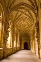 Monasterio San Juan de los Reyes. Toledo. Castilla-La Mancha, Spain