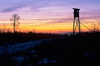 Deerstand at sunset in Franconia _ Bavaria/Germany