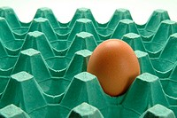 Close-up of an egg in an egg carton