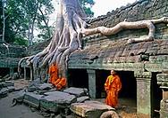 Ruins of Angkor Wat (W.H.). Cambodia. January 2007