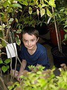 Boy sitting between plants