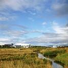 A swamp in Reykjavik city, Iceland