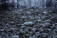 Winter, Sweden