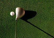 Golf ball and club on grass, elevated view