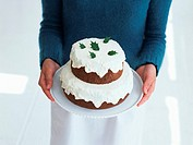 A double-tier cocoa cake
