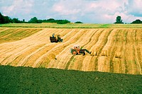 High angle view of tractors in a wheat field, Funen County, Denmark