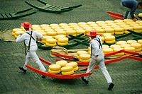 High angle view of two men carrying cheese, Alkmaar Cheese Market, Alkmaar, Netherlands