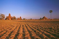 Pagodas in a plowed field, Bagan, Myanmar