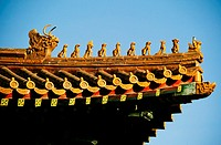 Close-up of an ornate roof, Forbidden City, Beijing, China