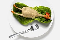 High angle view of figurine of a chicken on a lettuce leaf