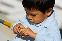 Close-up of a boy holding a fruit