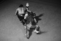 Two Mixed Martial Arts Fighter Fighting (thumbnail)