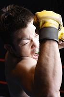 Mixed Martial Arts Fighter Elbowing