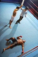 Mixed Martial Arts Fighter Wins by KO