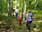 Parents and children 3-7 walking in woodland