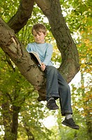Boy 9-11 sitting in treereading book, low angle view