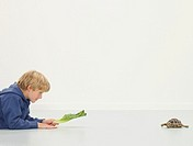 Boy 8-10 holding lettuce leaf out to tortoise, side view