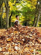 Boy 8-9 playing with leaves in woodland
