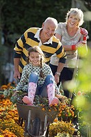 Senior man pushing granddaughter 8-10 in wheelbarrow in garden, grandmother looking on, smiling