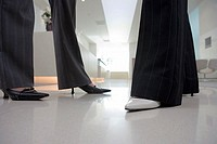 Two businesswomen wearing high heels and trousers, talking in lobby, side view, low section, surface level