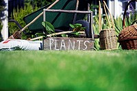 Box labeled 'plants' in garden beside wheelbarrow, compost and wicker baskets, surface level