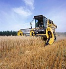 Combine harvester on oat field