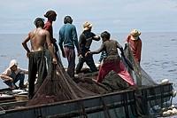 Malaysia, Mabul Island, Malaysian fishermen hauling in tuna with their nets