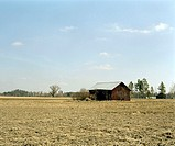 wooden cottage in field