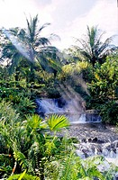 Costa Rica, Arenal Volcano National Park, Tabacon, hot springs (thumbnail)