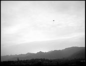 Bird soaring high above rocky landscape