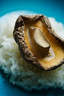 Close-up of a shitake mushroom on a bed of steamed white rice