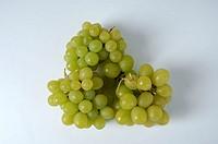 Grapes, ´Königin, der, Weingärten´, Vitis, vinifera,