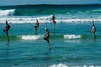 Stilt, fishermen, Anhamgama, Sri, Lanka, angler,