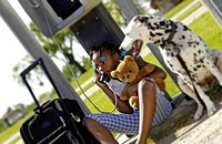 A young girl talking on a pay phone with a Dalmatian by her side