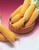 Sweetcorn