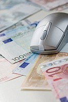Computer mouse on Euro notes, close-up